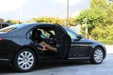 new lumousine service (web) (9)